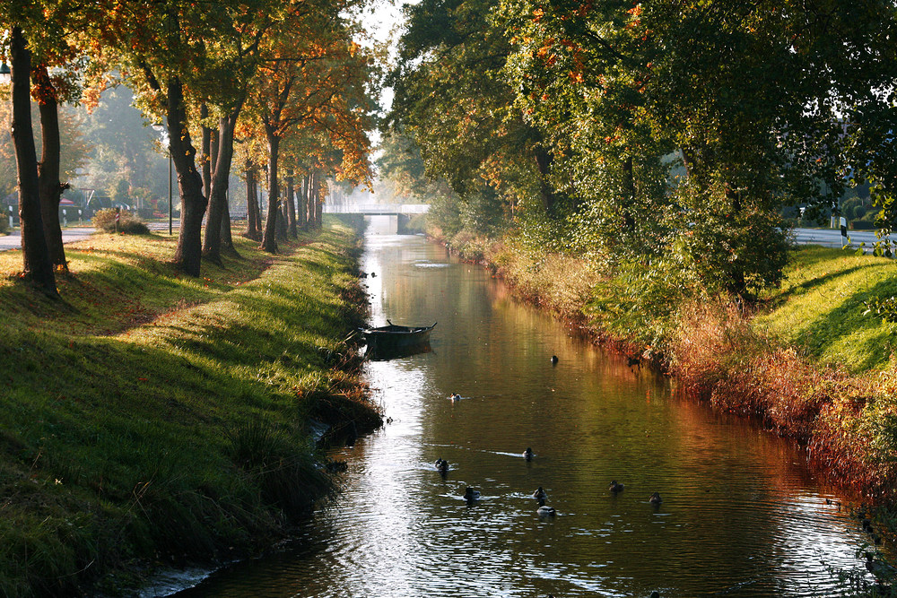 Herbst am Augustfehner Kanal