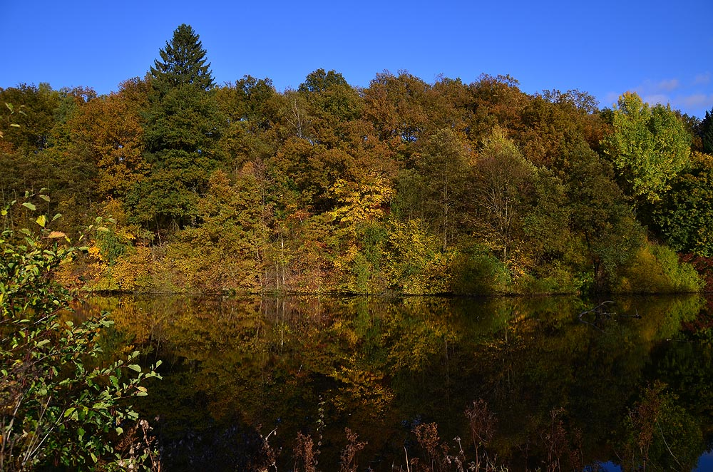 Herbst am Biggesee 1