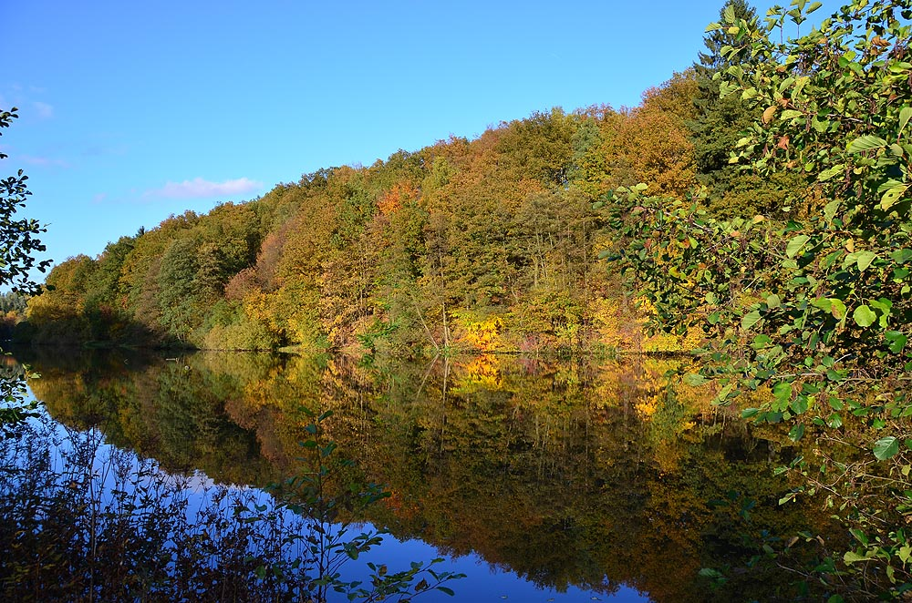 Herbst am Biggesee 2