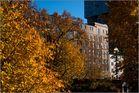 Herbst am Binnenhafen