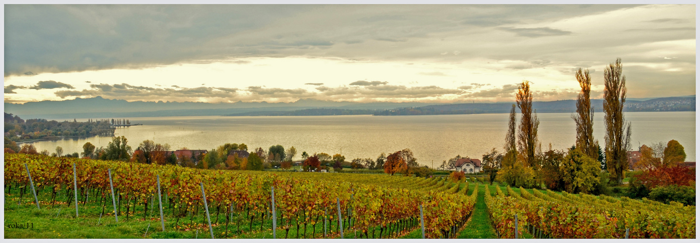 """"""" Herbst am Bodensee """""""