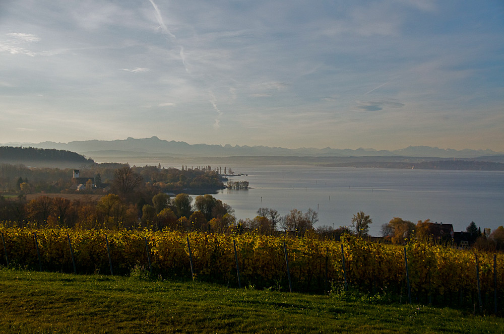 Herbst am Bodensee