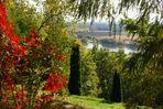 Herbst am Bogenberg