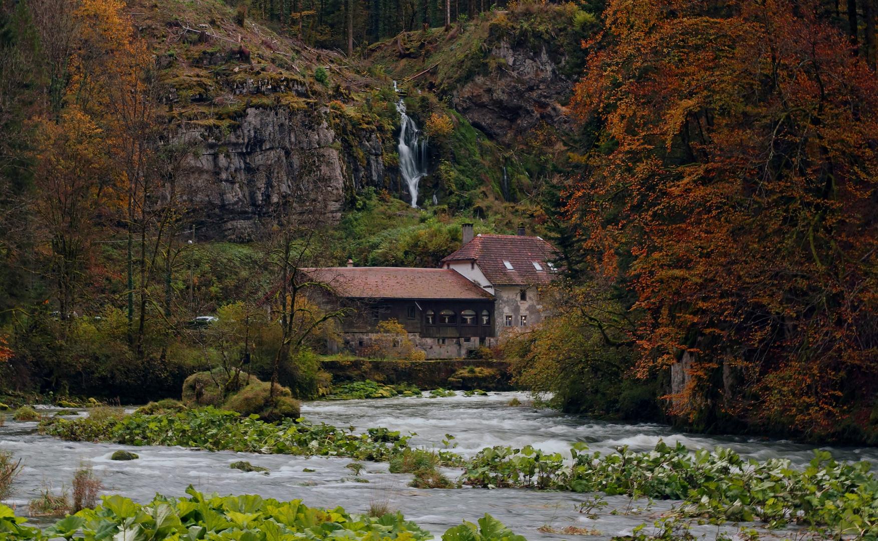 Herbst am Doubs (Jura, Schweiz)