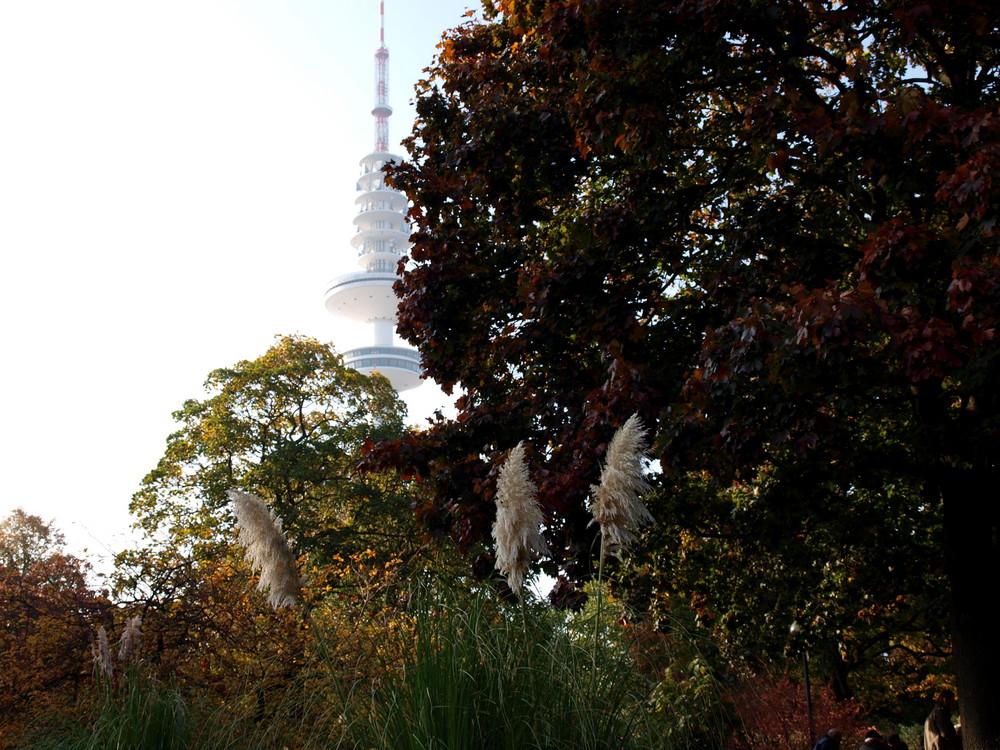 Herbst am Fernsehturm