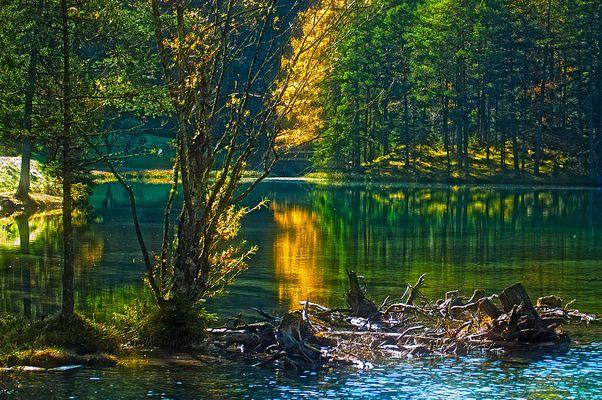 Herbst am Fernsteinsee