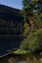 Herbst am Großen Arbersee