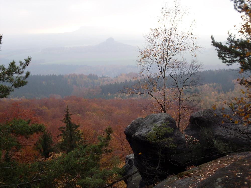 Herbst am Großen Winterberg - Sächsische Schweiz