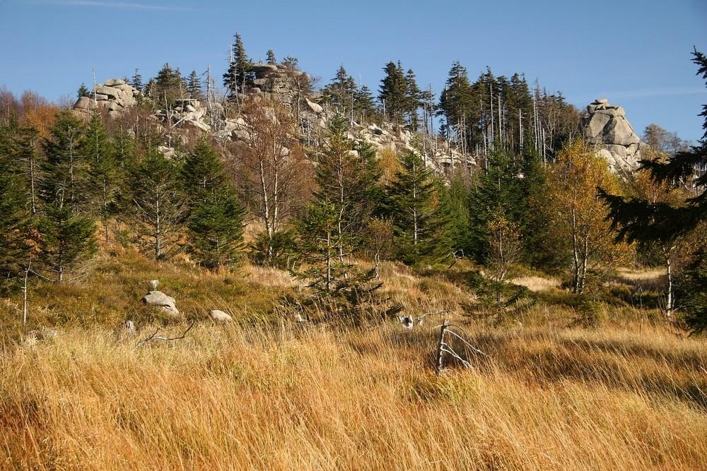 Herbst am Hohnekamm