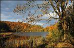 *Herbst am Holzmaar*