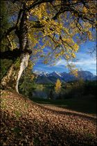 ~ Herbst am Karwendel ~