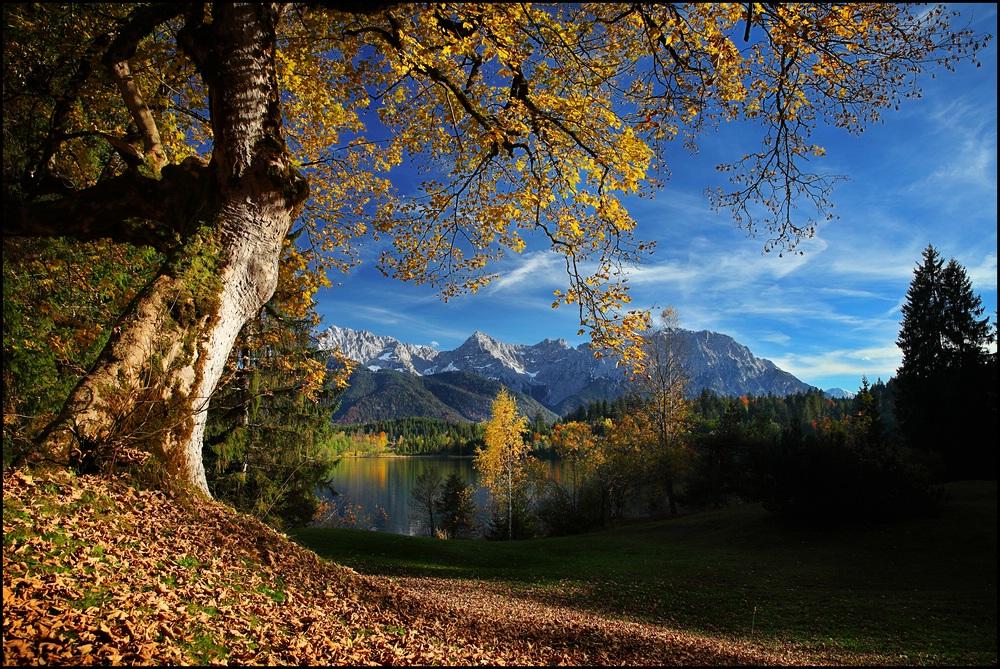 ~ Herbst am Karwendel [quer] ~