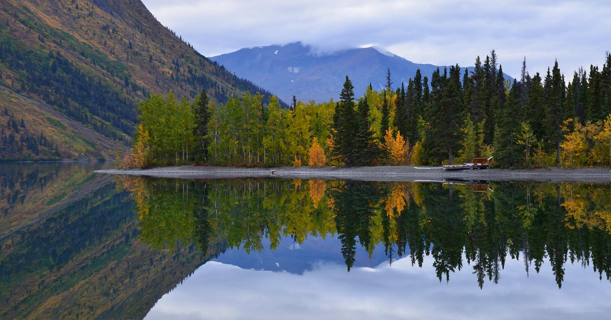 Herbst am Kathleen Lake im Yukon