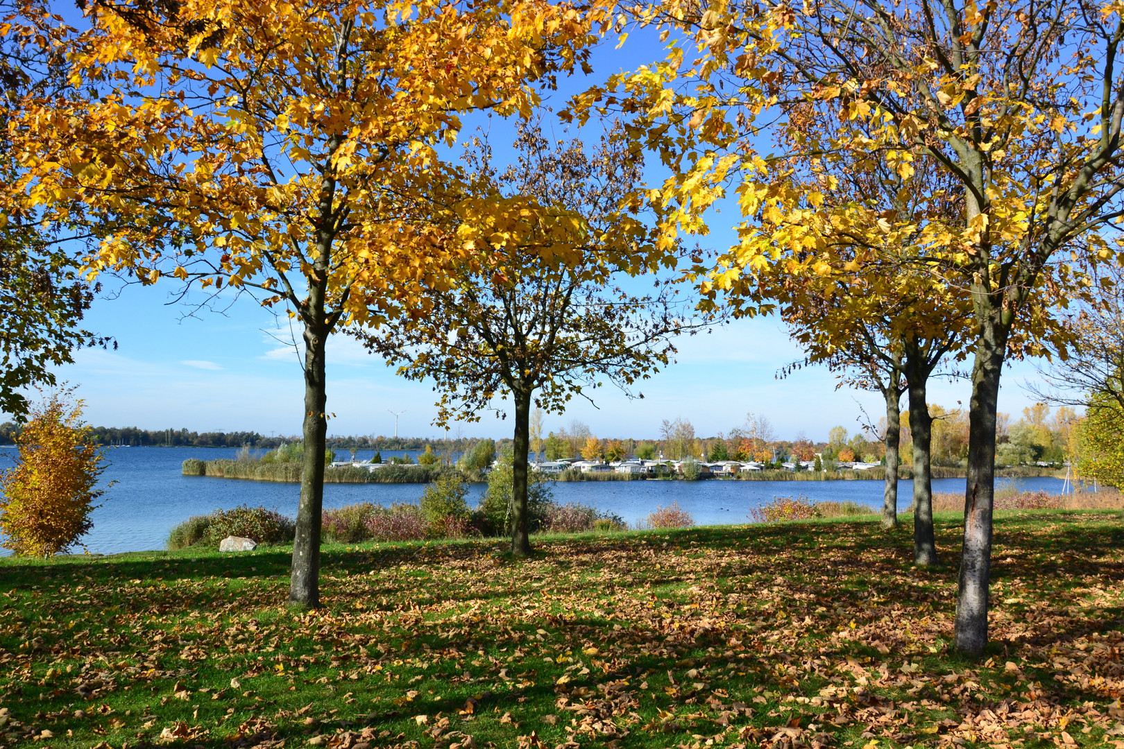 """Herbst am """"Kulki"""", wie er liebevoll von den Grünauern  genannt wird…"""