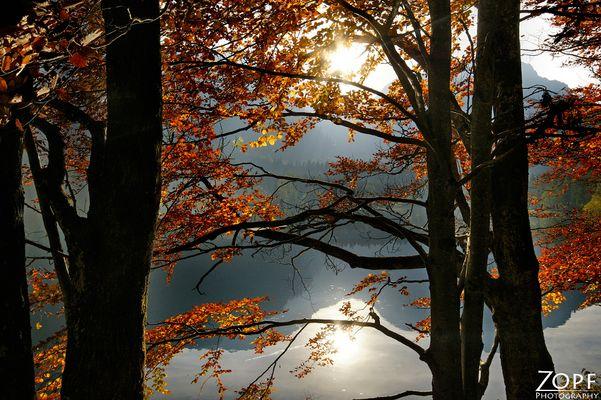 Herbst am Langbathsee