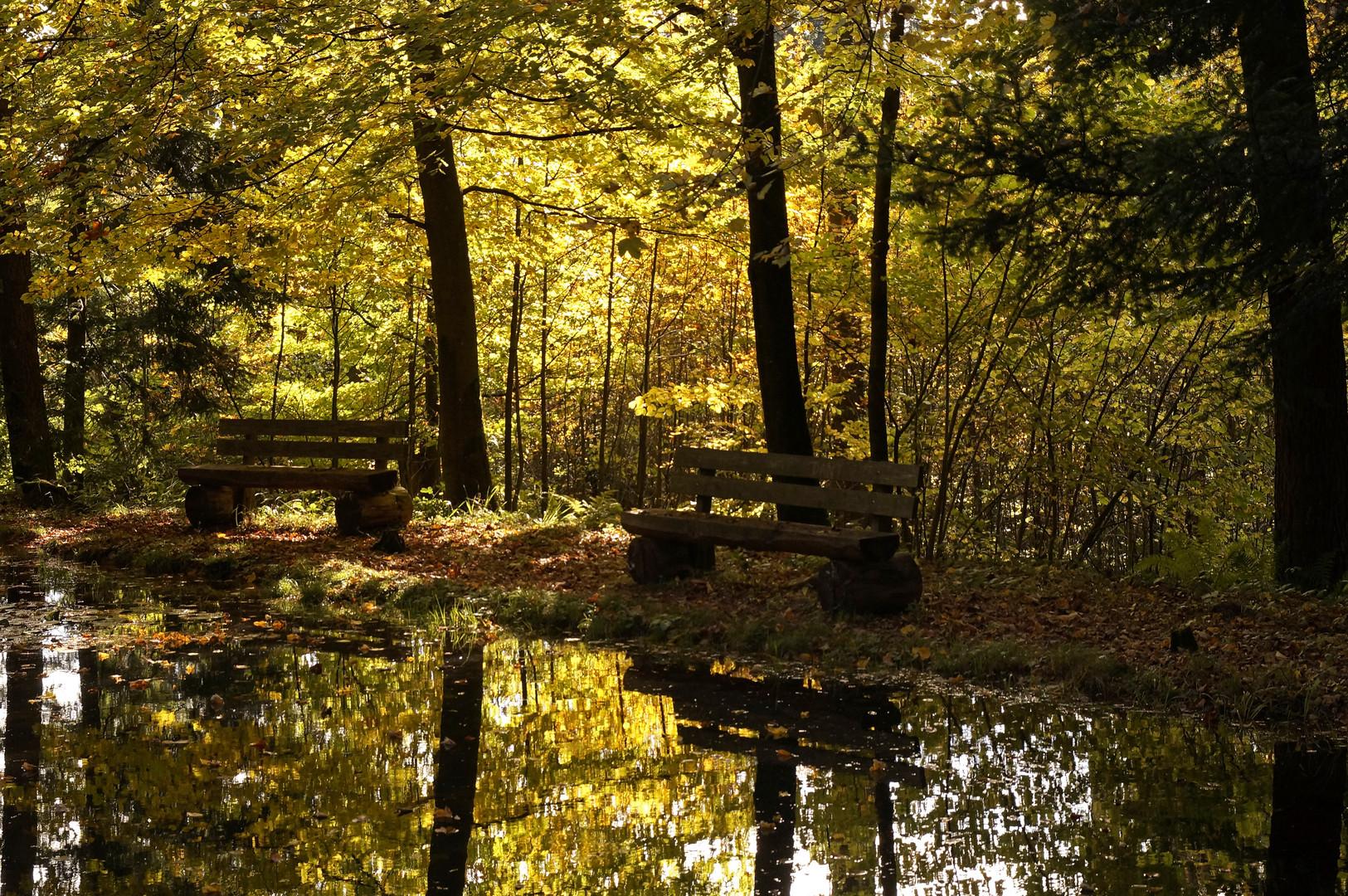 Herbst am Mattenweiher