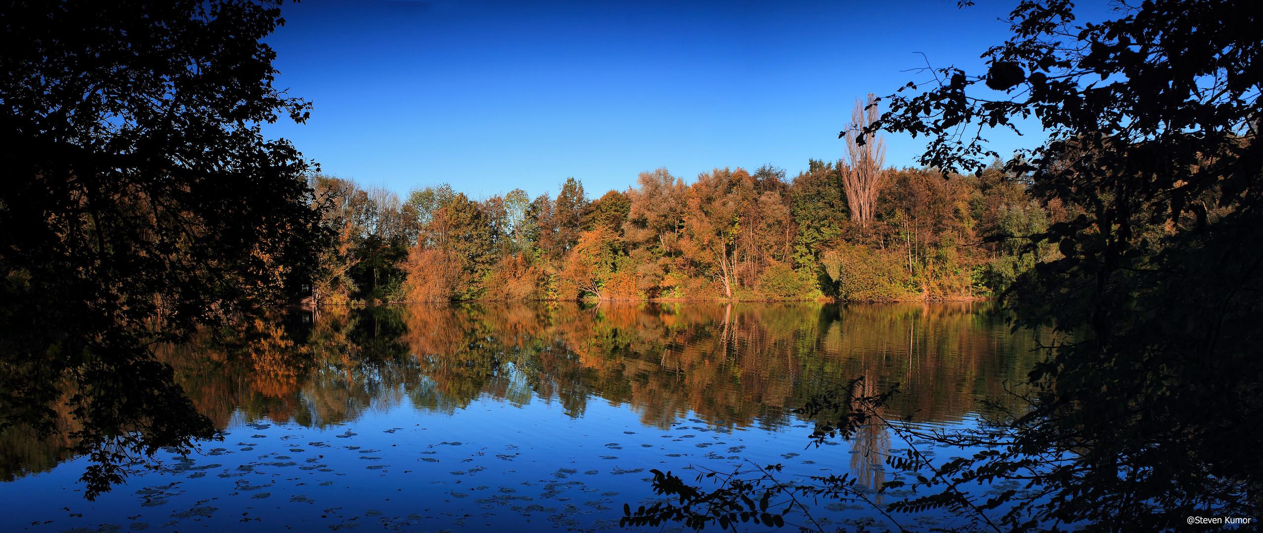 Herbst am Mergelbergteich