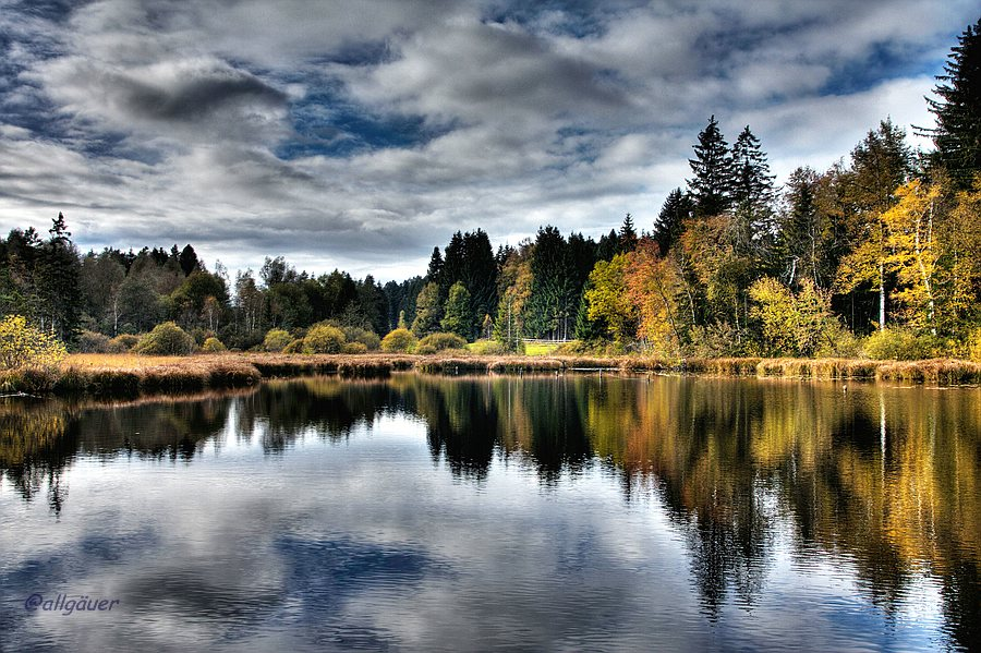 Herbst am Moorsee