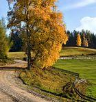 Herbst am Plesch