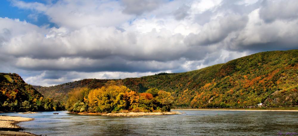 Herbst am Rhein