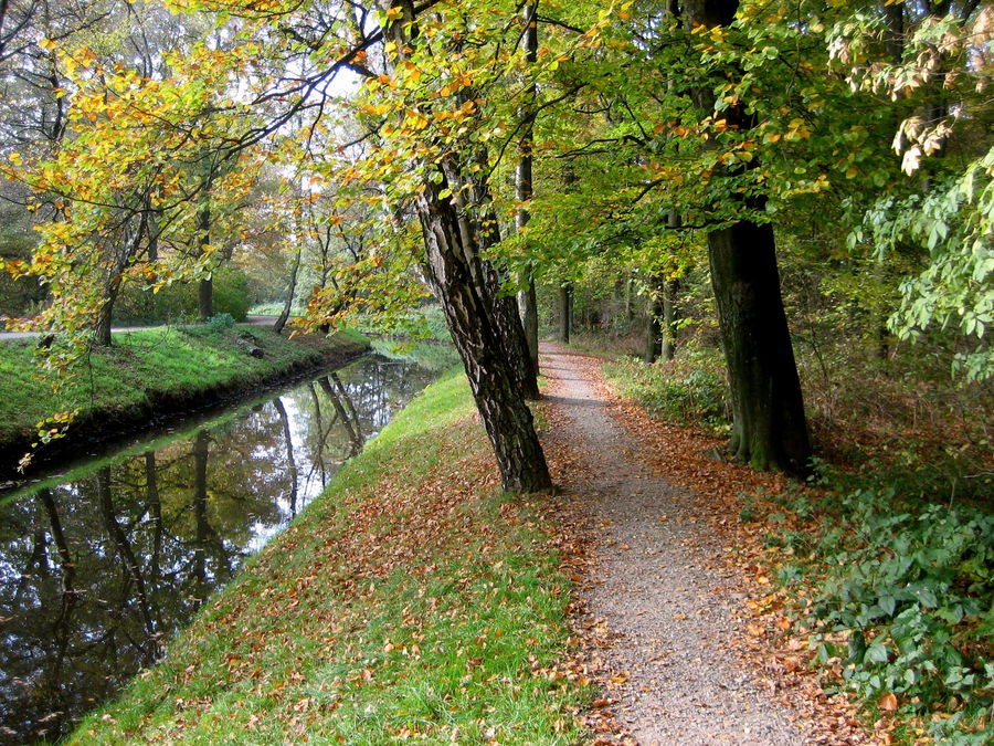 Herbst am Rotbach...