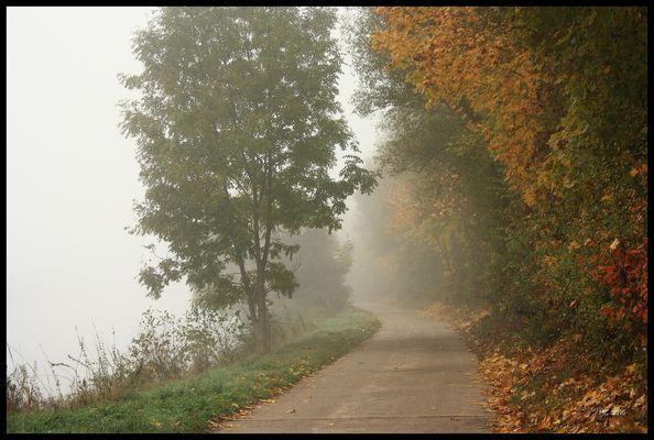 Herbst am Saaruferweg