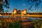Herbst am Schloss Moritzburg
