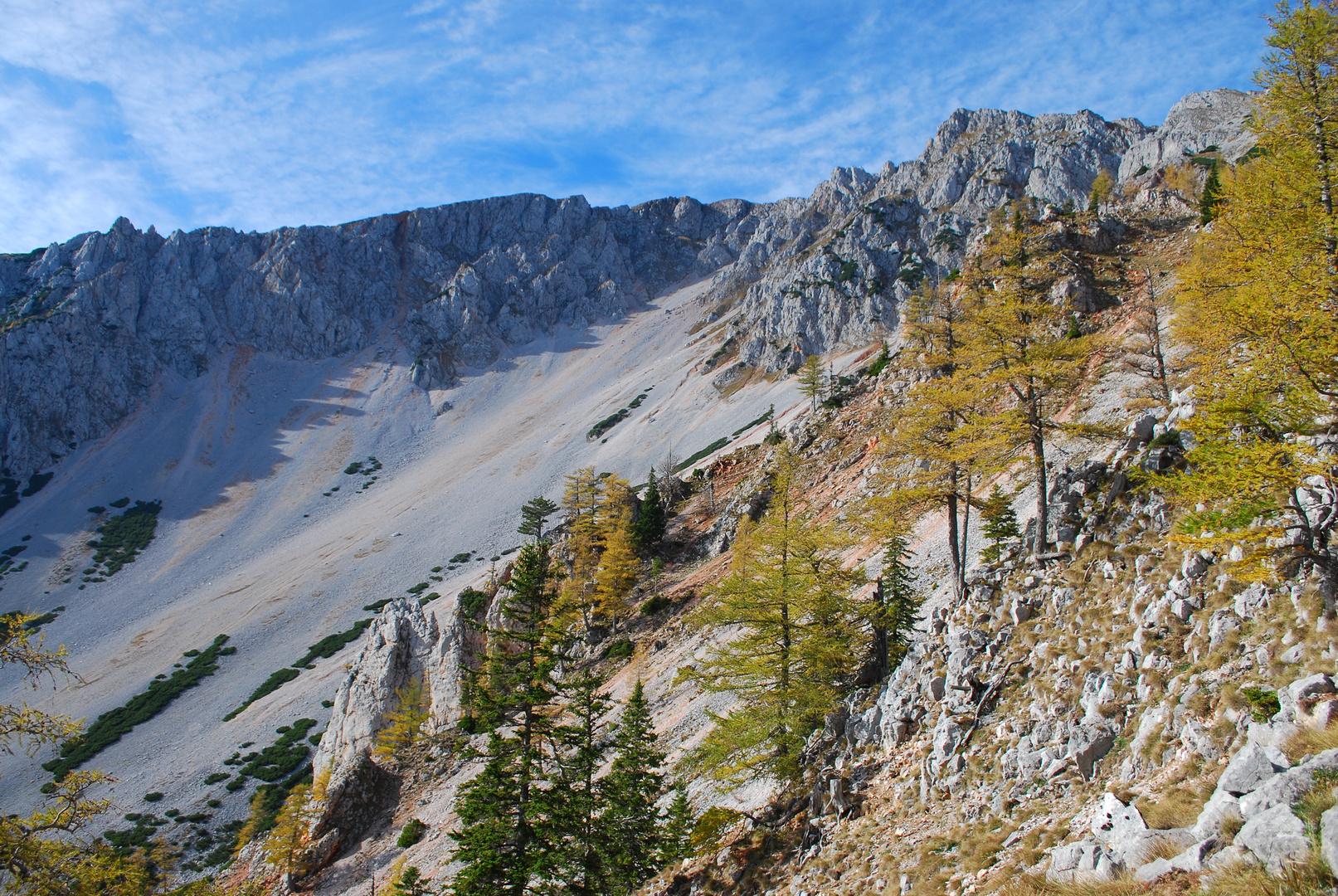 Herbst am Schneeberg (2076m)