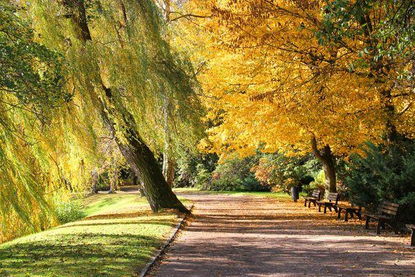 Herbst am Schwanenteich 2