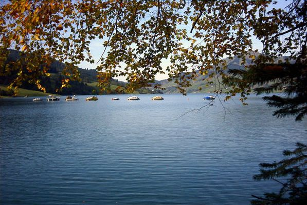Herbst am See 1