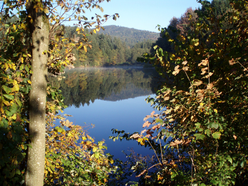 Herbst am See 3