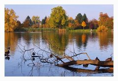 Herbst am See...