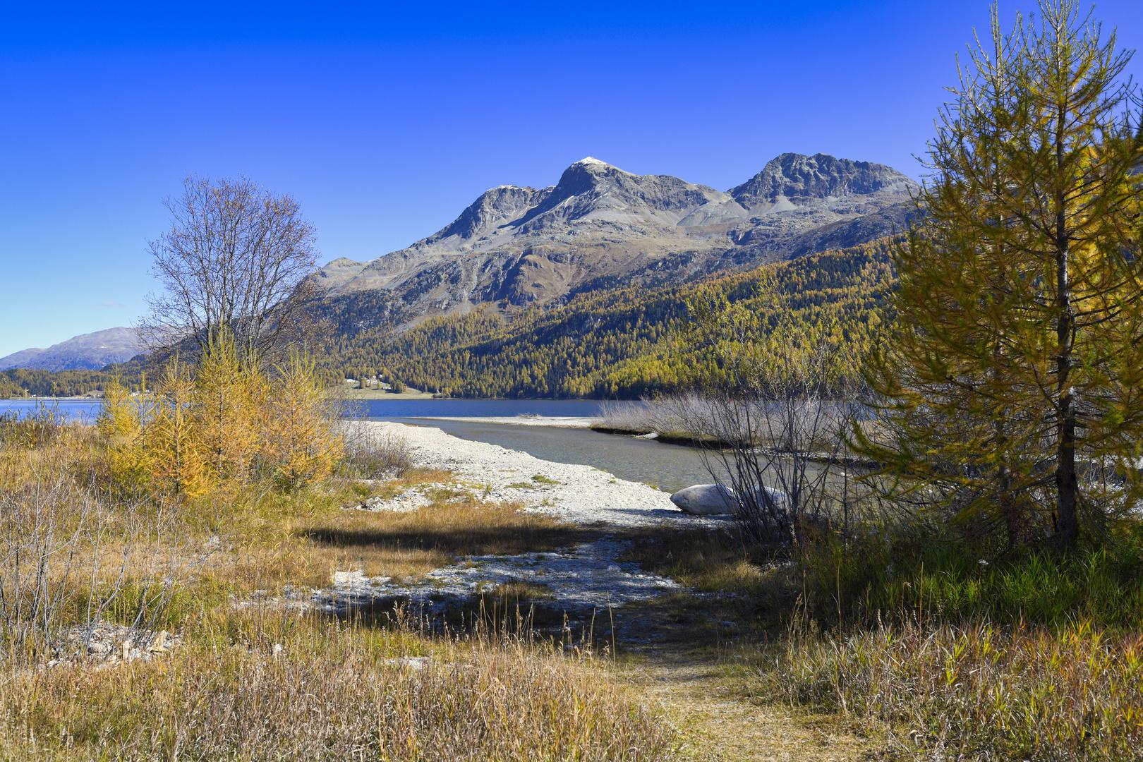 Herbst am Silser See 2
