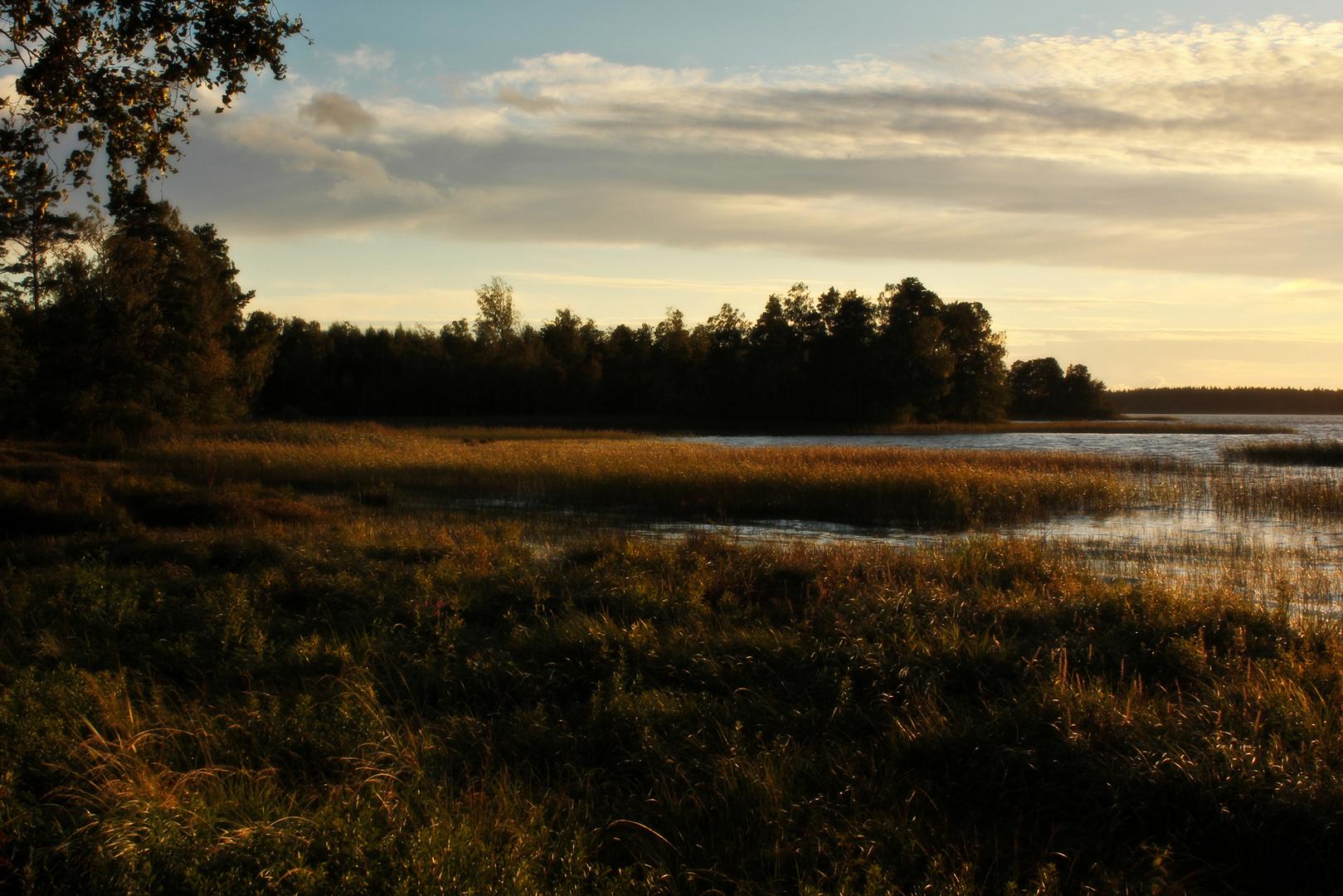 Herbst am Åsnen