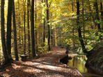 """Herbst am """"Stillen Bach"""""""