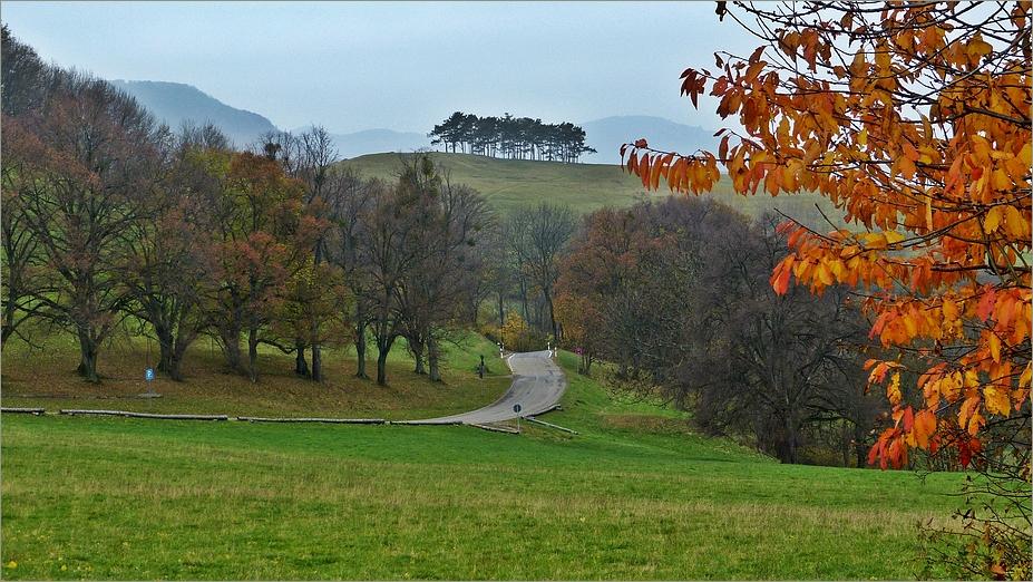 Herbst am Teckberg