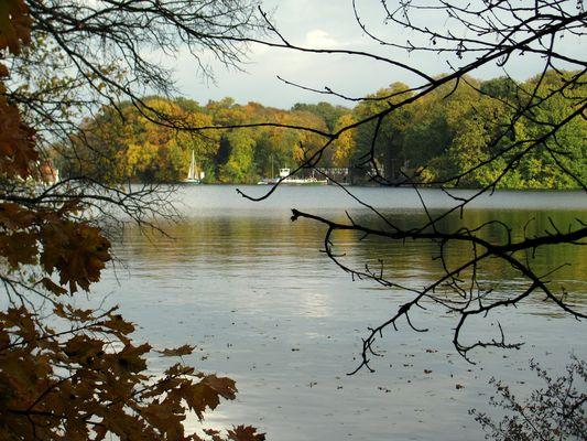 Herbst am Tegeler See