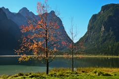 Herbst am Toblach See