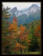 Herbst am Watzmann