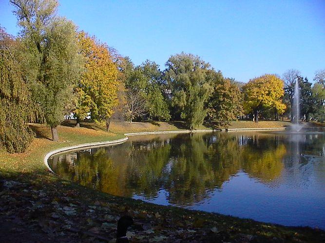 Herbst am Zwingerteich