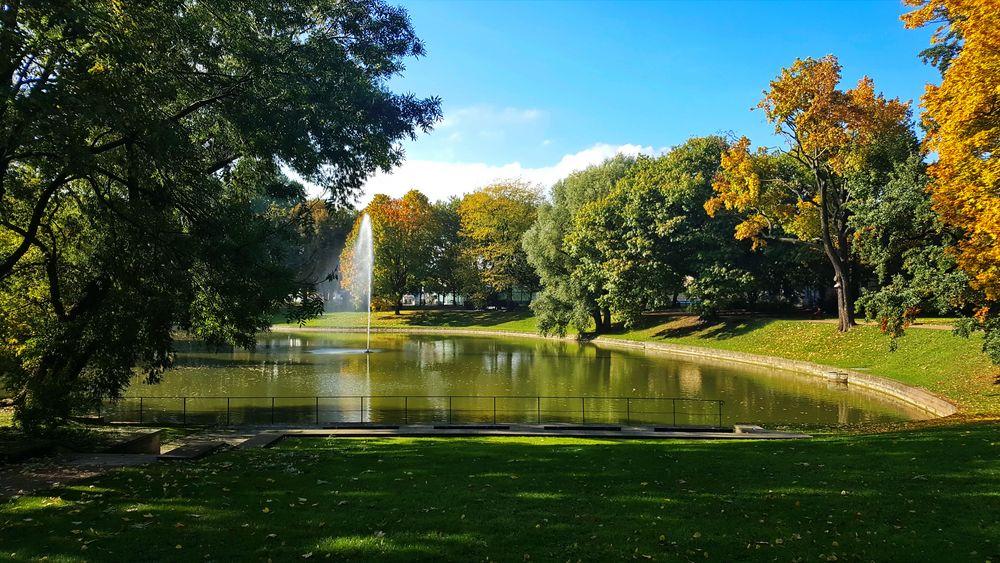 Herbst am Zwingerteich in Dresden