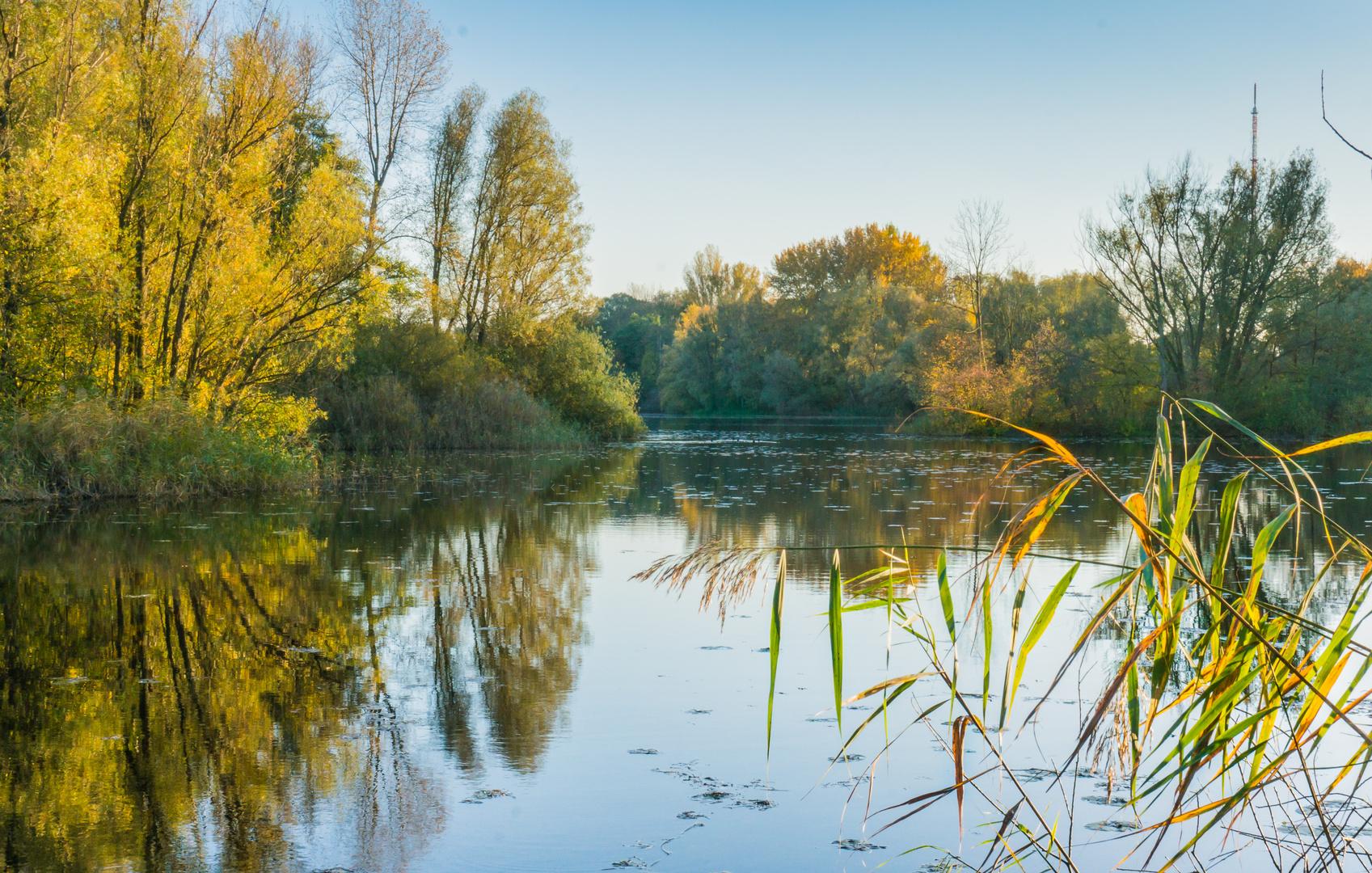 Herbst an den Ricklinger Teichen - Hannover