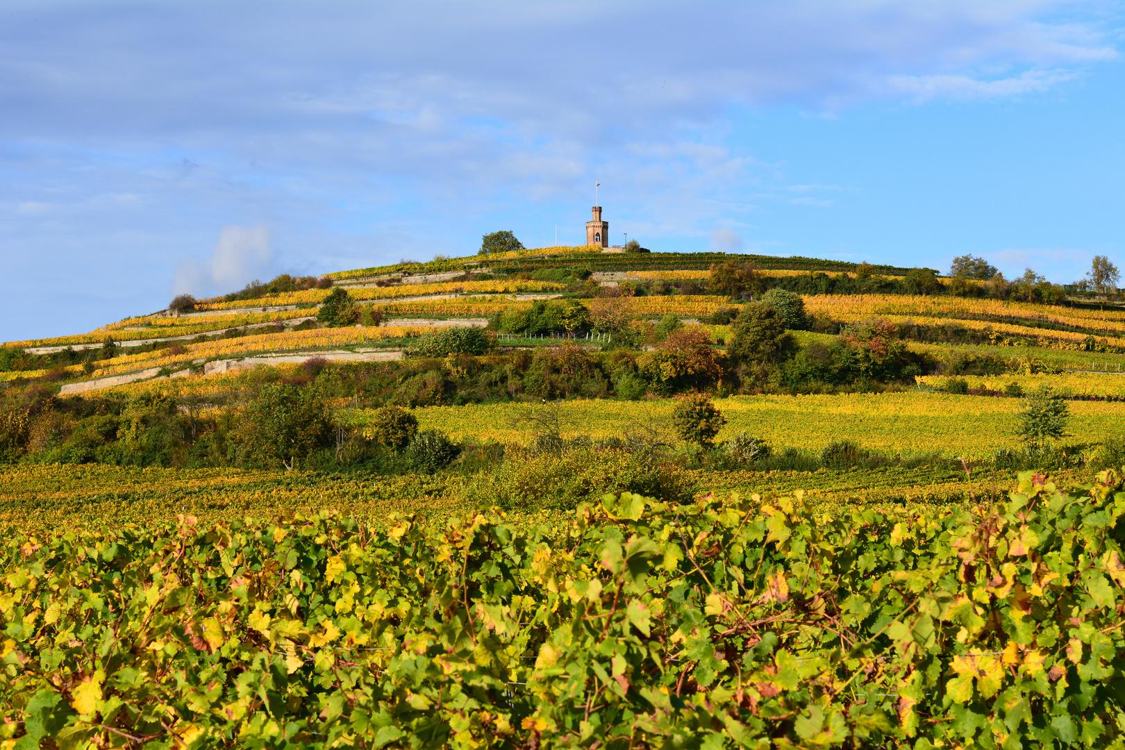 Herbst an der Deutschen Weinstrasse