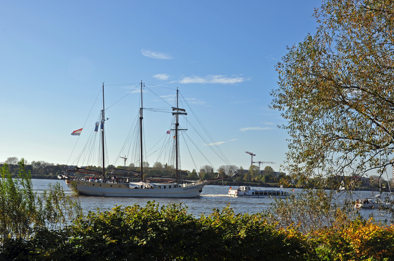 Herbst an der Elbe 2