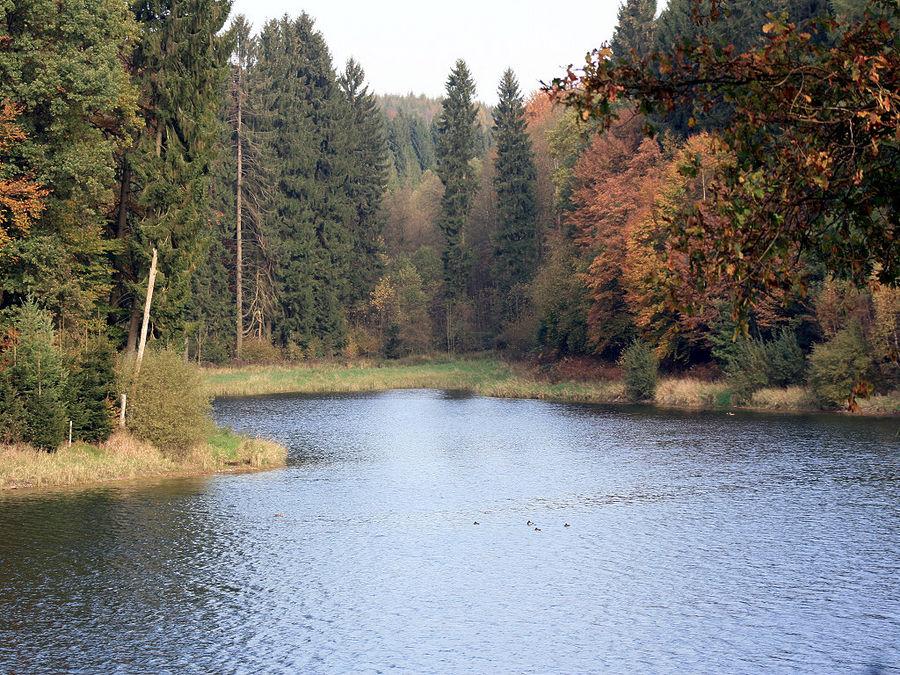 Herbst an der Eschbachtalsperre in Remscheid