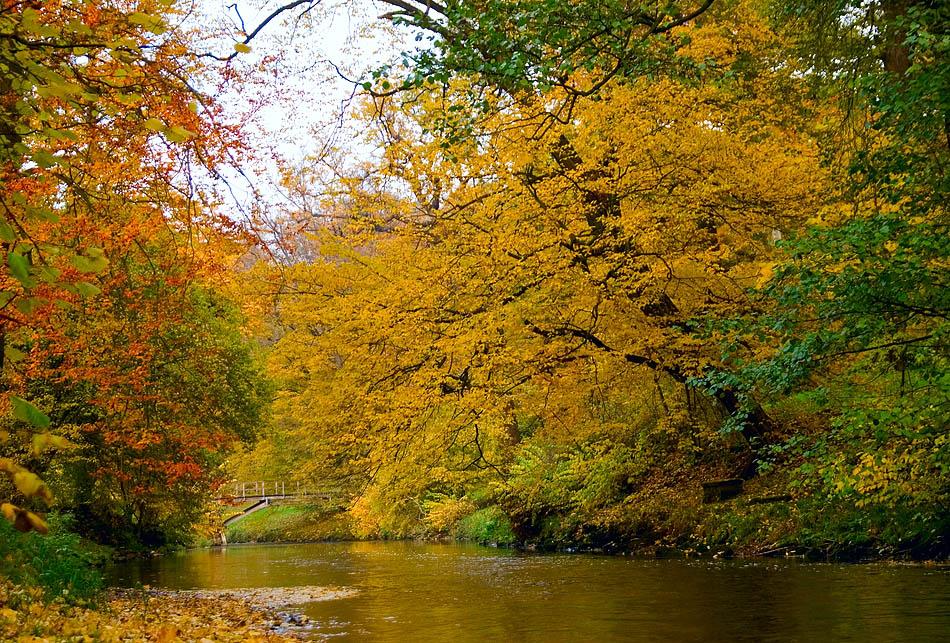 Herbst an der Ilm