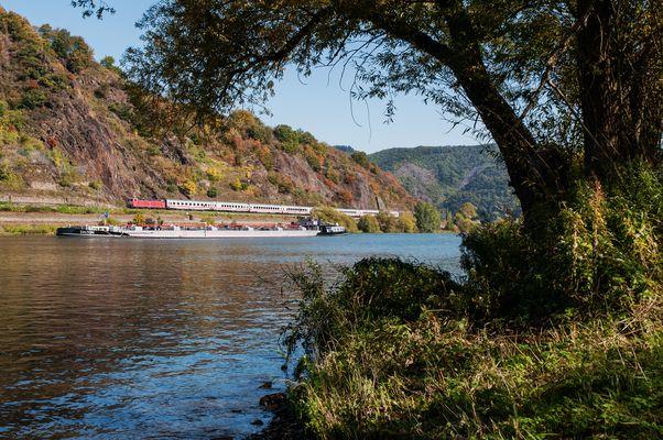 Herbst an der Mosel - II -