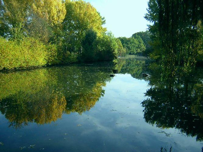 Herbst an der Pegnitz (1)