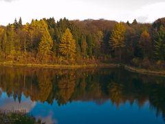 Herbst an der Ronsdorfer Talsperre
