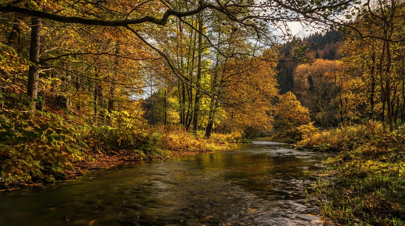 Herbst an der Steinach